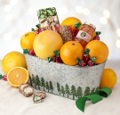 Evergreen Tree Gift Tin